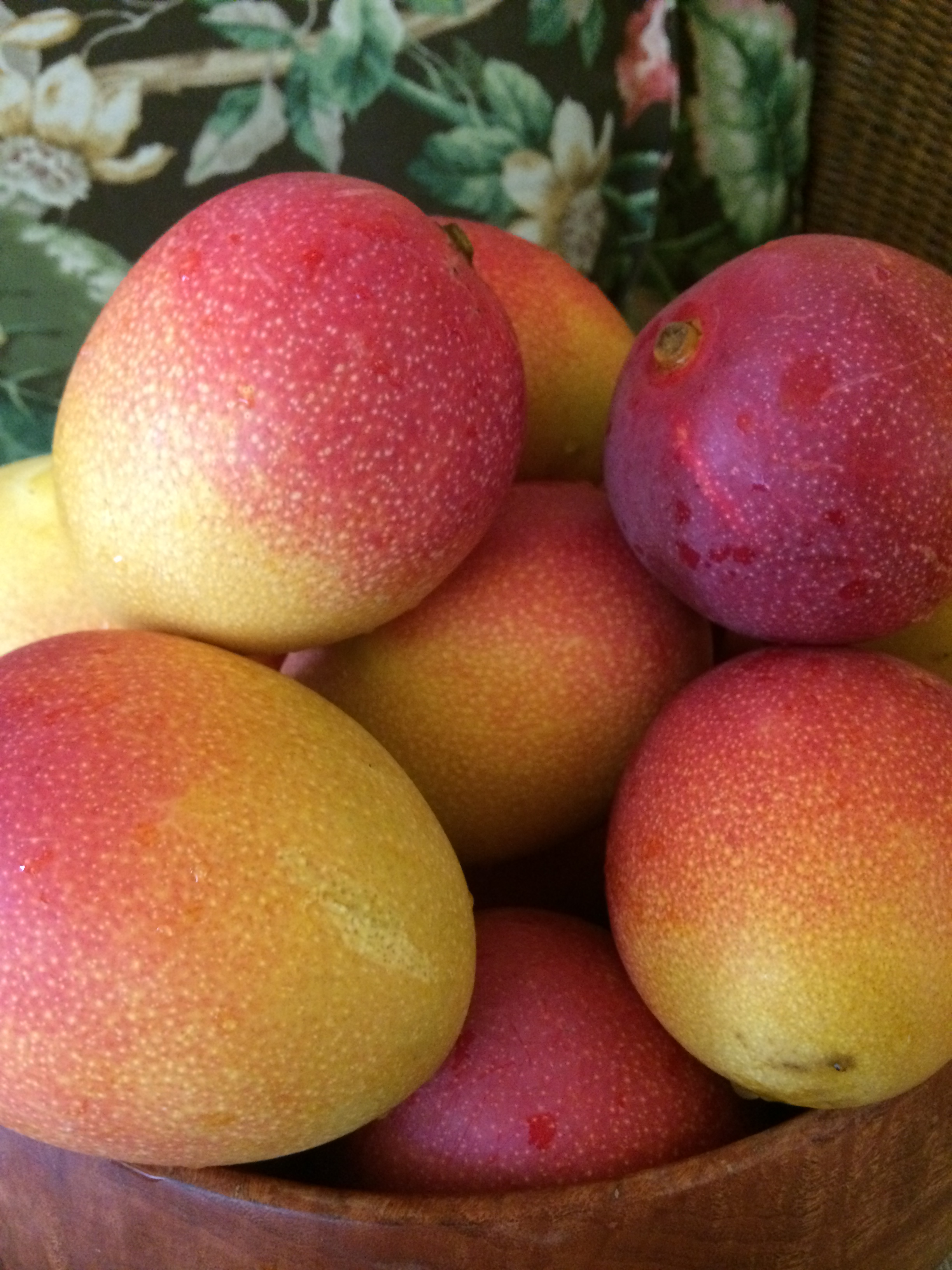 Local Miami Mangos from Miami Shores